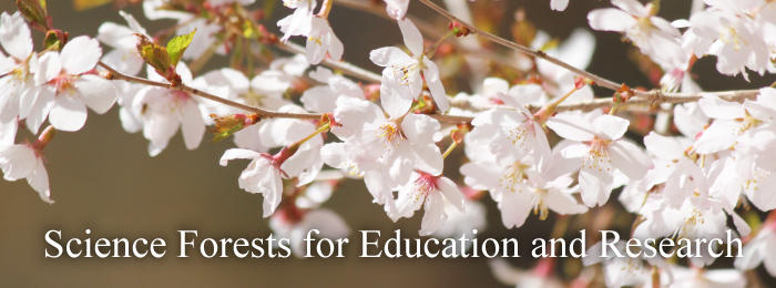 Science Forests for Education and Research