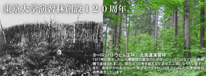 Hokkaido_top_topimg2.jpg