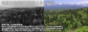 Hokkaido_top_topimg3.jpg