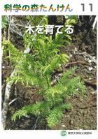 科学の森たんけん11 木を育てる