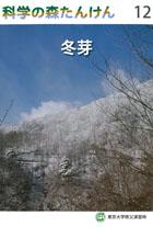 科学の森たんけん12 冬芽