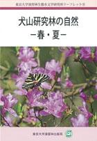 犬山研究林の自然-春・夏-
