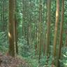 森林流域管理学研究室
