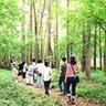 富士癒しの森研究所