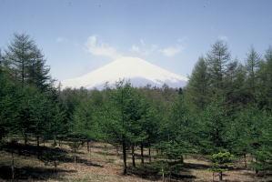 fuji05-1.jpg